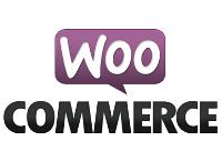 Chrome WooCommerce WordPress Bug